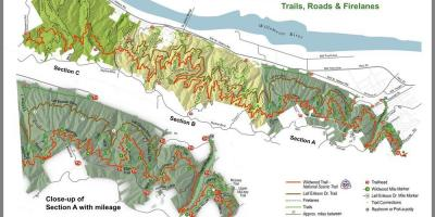 Forest Park Portland trail mappa